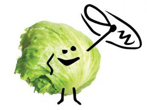 Salad Sling Branding